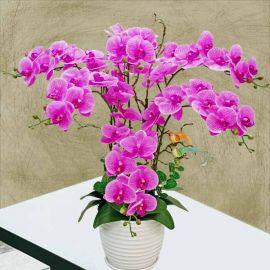 Artificial Purple Phalaenopsis Orchid Table Arrangement