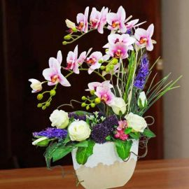 Artificial Phalaenopsis Orchid Table Arrangement 65cm Height