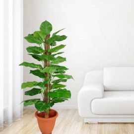 Artificial Money Plant 4 Feet Height