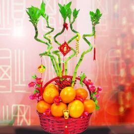 5 Curly Bamboo With 18 Oranges New Year Basket Arrangement