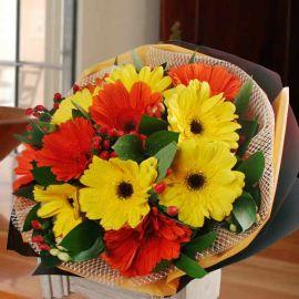 12 Mixed Gerbera Hand Bouquet