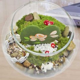 Heart shaped plant (Kerrii Hoya) with painted flowers & Live moss Terrarium