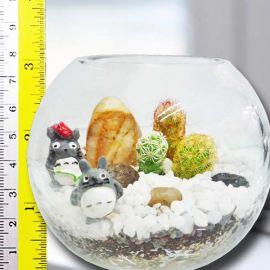 3 Tiny Cactus in 9.5cm Glass.