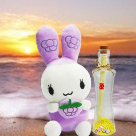 Bunny & Message-in-a-Bottle
