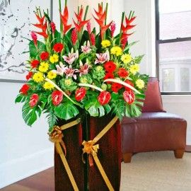 Heliconia & Anthurium Opening Flowers Delivery