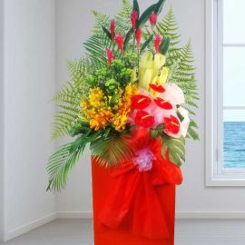 Anthurium & Orchids Opening Stand Arrangement