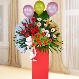 Mixed Color Gerbera Flowers In Box Stand Arrangement About 5 Fee