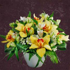Cymbidium Orchids Centerpiece Arrangement