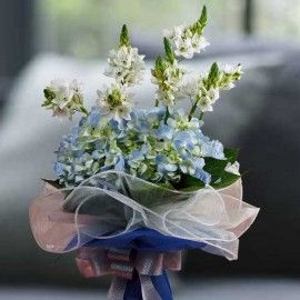 Ornithogalum Flowers & Blue hydrangeas Hand Bouquet