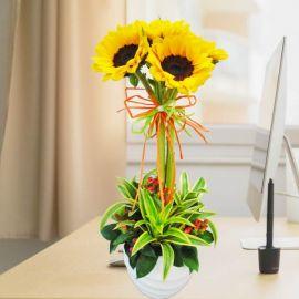 5 Sunflowers In Vase