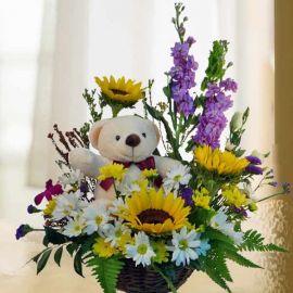 Sunflower & Bear in Basket