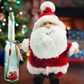Santa Cool Message in a Bottle
